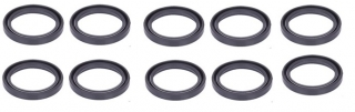 Caliper Seal Repair Kit