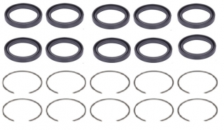 Caliper Seal and Circlip Kit